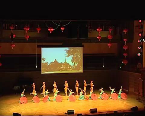 傣族舞蹈-雨竹林
