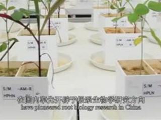 11届女科学家奖—廖红