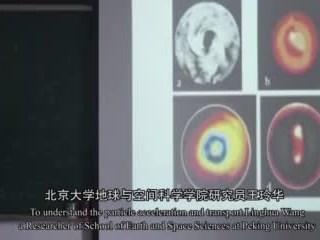 12届中国青年女科学家奖获奖者王玲华