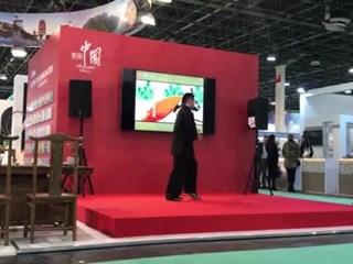 国家公派博士石建东匈牙利表演中国功夫